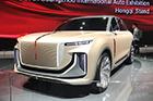 展示未来设计方向,红旗E115概念车国内首发